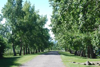 Photo 6: 30226 Springbank Road in Rural Rocky View County: Rural Rocky View MD Land for sale : MLS®# A1046397