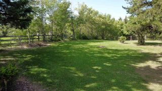 Photo 47: 242 52349 RGE RD 233: Rural Strathcona County House for sale : MLS®# E4210608