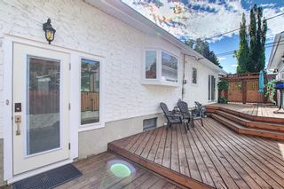 Photo 35: 736 WILLACY Drive SE in Calgary: Willow Park Detached for sale : MLS®# A1057135