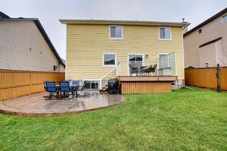 Photo 46: 73 Canals Circle SW: Airdrie Detached for sale : MLS®# A1104916