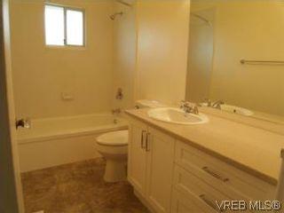 Photo 8: 1607 Chandler Ave in VICTORIA: Vi Fairfield East Half Duplex for sale (Victoria)  : MLS®# 504379