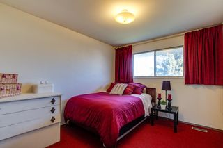 Photo 32: 10424 39A Avenue in Edmonton: Zone 16 House for sale : MLS®# E4264425