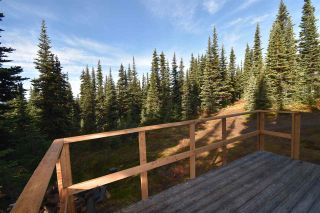 """Photo 5: 277 PRAIRIE Road in Smithers: Smithers - Rural House for sale in """"Prairie Cabin Colony"""" (Smithers And Area (Zone 54))  : MLS®# R2492758"""