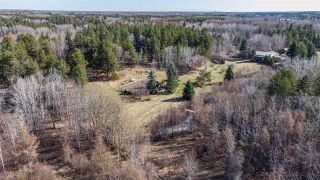 Photo 3: 128 27019 TWP RD 514: Rural Parkland County House for sale : MLS®# E4240961