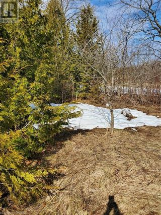 Photo 7: PT LT 21-22 GREY ROAD 14 in Grey Highlands: Vacant Land for sale : MLS®# 40088643