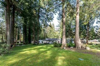 Photo 18: 14124 CRESCENT Road in Surrey: Elgin Chantrell House for sale (South Surrey White Rock)  : MLS®# R2552873
