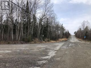 Photo 5: 1252 Dryden Rd E Unit# LOT A in Wahnapitae: Vacant Land for sale : MLS®# 2094595