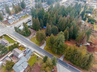 Photo 19: 12750 60 Avenue in Surrey: Panorama Ridge House for sale : MLS®# R2149288