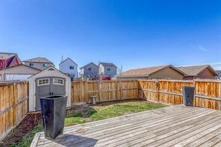 Photo 29: 454 COPPERPOND Boulevard SE in Calgary: Copperfield Detached for sale : MLS®# A1097323