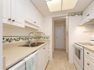 Photo 9: 303 1021 Collinson St in : Vi Fairfield West Condo for sale (Victoria)  : MLS®# 853542
