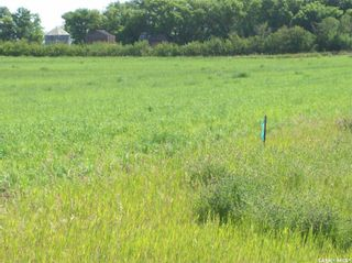 Photo 13: Eagle Creek Acreage 80 Acres in Asquith: Lot/Land for sale : MLS®# SK863384
