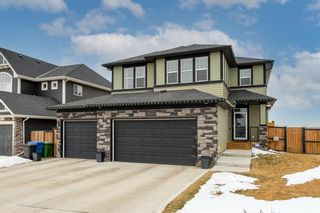 Photo 1: 197 Rainbow Falls Heath: Chestermere Detached for sale : MLS®# A1062288