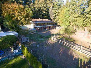 Photo 6: 12458 53 Avenue in Surrey: Panorama Ridge House for sale : MLS®# R2546654