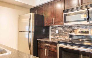 Photo 7: 215 1060 McConachie Boulevard in Edmonton: Zone 03 Condo for sale : MLS®# E4257715