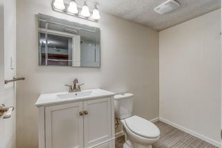 Photo 24: 454 COPPERPOND Boulevard SE in Calgary: Copperfield Detached for sale : MLS®# A1097323