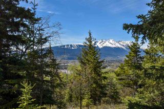 Photo 4: 3205 MILLAR Road in Smithers: Smithers - Rural House for sale (Smithers And Area (Zone 54))  : MLS®# R2475972