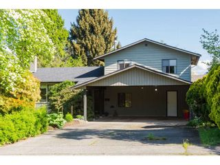 Photo 4: 20877 ALPINE Crescent in Maple Ridge: Northwest Maple Ridge House for sale : MLS®# R2454565