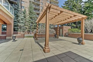 Photo 44: 303 228 26 Avenue SW in Calgary: Mission Apartment for sale : MLS®# A1096803
