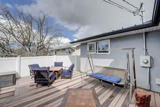 Photo 37: 3203 12 Avenue SE in Calgary: Albert Park/Radisson Heights Detached for sale : MLS®# A1139015