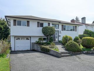 Photo 1: 3977 Birchwood St in : SE Lambrick Park House for sale (Saanich East)  : MLS®# 874432