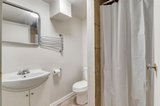 Photo 29: 2506 35 Street SE in Calgary: Southview Detached for sale : MLS®# A1146798