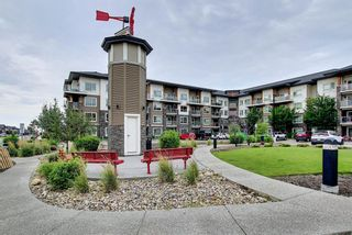Photo 31: 1406 240 Skyview Ranch Road NE in Calgary: Skyview Ranch Apartment for sale : MLS®# A1139810