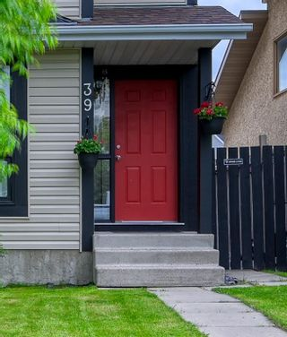 Photo 10: 39 Erin Green Way SE in Calgary: Erin Woods Detached for sale : MLS®# A1118796
