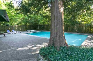 Photo 32: 591 SHANNON Crescent in North Vancouver: Delbrook House for sale : MLS®# R2487515