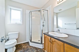 Photo 20: 371 Copperfield Heights SE in Calgary: Copperfield Detached for sale : MLS®# A1131781