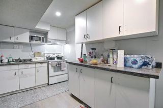 Photo 33: 455 Falconridge Crescent NE in Calgary: Falconridge Detached for sale : MLS®# A1103477