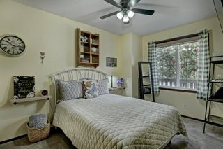 Photo 17: 14 Crystal Ridge Cove: Strathmore Semi Detached for sale : MLS®# A1142513