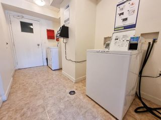 Photo 16: 305 4455C Greenview Drive NE in Calgary: Greenview Apartment for sale : MLS®# A1133635
