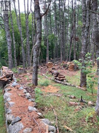 Photo 1: Lot 40C Labelle Road in Labelle: Vacant Land for sale : MLS®# 202120719
