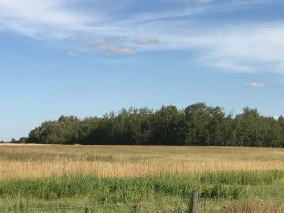 Photo 21: 57525 Rg Rd 214: Rural Sturgeon County Rural Land/Vacant Lot for sale : MLS®# E4237624