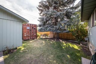 Photo 36: 2719 41A Avenue SE in Calgary: Dover Detached for sale : MLS®# A1132973