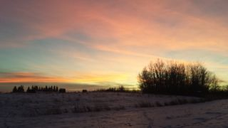 Photo 44: 3361 Chickadee Drive in Edmonton: Zone 59 House for sale : MLS®# E4228926