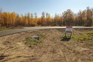 Photo 4: 10 27331 Township Road: Rural Leduc County Rural Land/Vacant Lot for sale : MLS®# E4240699