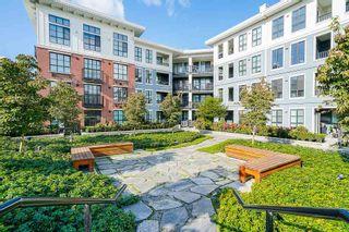 """Photo 29: 425 15137 33 Avenue in Surrey: Morgan Creek Condo for sale in """"Harvard Gardens/Prescott Commons"""" (South Surrey White Rock)  : MLS®# R2535624"""