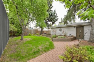 Photo 30: 14627 88 Avenue in Edmonton: Zone 10 House for sale : MLS®# E4246378