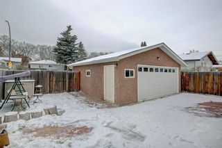 Photo 31: 3050 30A Street SE in Calgary: Dover Detached for sale : MLS®# A1050632