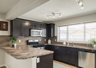Photo 22: 189 COPPERPOND Road SE in Calgary: Copperfield Detached for sale : MLS®# A1091868