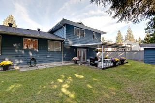 Photo 13: Pitt Meadows Split Level House for Sale @ 19344 121A Ave MLS #V924031