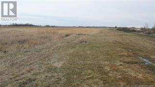 Photo 1: 28011 Township ROAD 372 in Rural Red Deer County: Retail for sale : MLS®# CA0188986
