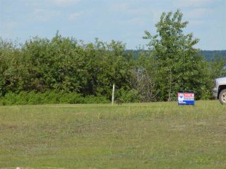 Photo 1: 1 SUNSET HARBOUR: Rural Wetaskiwin County Rural Land/Vacant Lot for sale : MLS®# E4161228