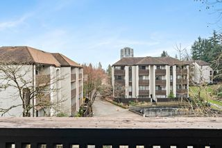 "Photo 14: 404 385 GINGER Drive in New Westminster: Fraserview NW Condo for sale in ""Fraser Mews"" : MLS®# R2556053"