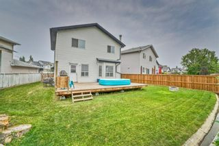 Photo 27: 161 Douglas Ridge Circle SE in Calgary: Douglasdale/Glen Detached for sale : MLS®# A1137353