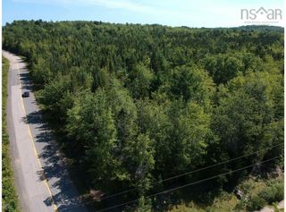 Photo 1: Lot Lake Pleasant Road in Springfield: 400-Annapolis County Vacant Land for sale (Annapolis Valley)  : MLS®# 202122591