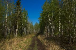Photo 13: RR 21 TWP 565A Lake Nakamun: Rural Lac Ste. Anne County Rural Land/Vacant Lot for sale : MLS®# E4246330