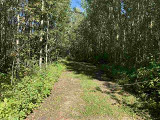 Photo 6: TBD Crystal Key Crescent: Rural Wetaskiwin County Rural Land/Vacant Lot for sale : MLS®# E4212671
