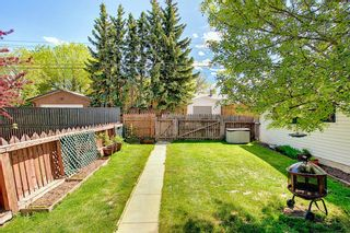 Photo 30: 11 Wellington Place SW in Calgary: Wildwood Detached for sale : MLS®# A1112496